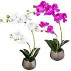 Orchideen 2er Set, weiß/fuchsia, mit Silbertopf - 100065400000 - 1 - 140px