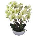 XL-Orchidee in Keramikschale, 66 cm