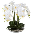 XL Orchidee weiß, im Silbertopf, 41 cm - 100391200000 - 1 - 140px