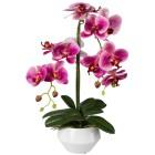 Orchidee pink, 52 cm, inkl. Keramikschale - 100544700000 - 1 - 140px