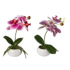 Orchideen 2er-Set lila-pink 27cm - 100545400000 - 1 - 140px