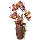 Orchideen-Arrangement, violett, 70 cm - 100570600000 - 1 - 140px
