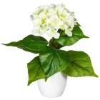 Hortensie, weiß, 40 cm, realtouch - 100578500000 - 1 - 140px