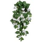 Bougainvillea-Hänger, weiß, 70cm - 100579100000 - 1 - 140px