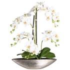 XL-Orchidee, 55cm, weiß - 100579500000 - 1 - 140px