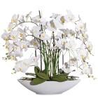 XXL-Orchidee mit Gras, weiß - 100681100000 - 1 - 140px