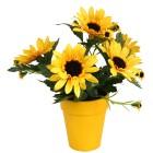 Sonnenblumen Arrangement - 100747500000 - 1 - 140px