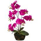 Orchidee im Moosballen, pink, 60 cm - 100749200000 - 1 - 140px