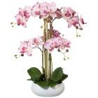 XL-Orchidee, weiß-lila, 53cm - 100754700000 - 1 - 140px