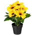Gerberabusch gelb 27cm - 100925600000 - 1 - 140px