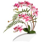 Orchideenarrangement pink. 50 cm - 100934000000 - 1 - 140px