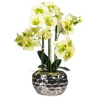 Orchidee hellgrün, ca. 55 cm - 100934100000 - 1 - 140px