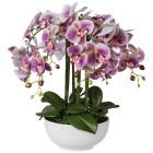 XXL-Orchidee lila 54 cm in Keramikschale - 101296400000 - 1 - 140px