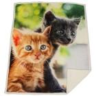 Sherpa-Decke Katzenpaar, Fotodruck - 101570300000 - 1 - 140px