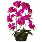 Orchidee im Moosballen lila 70cm - 101600400000 - 1 - 140px