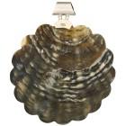 Anhänger 925 St. Silber Black Lip Shell Blume - 101954800000 - 1 - 140px