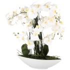 XL-Orchidee 70 cm, weiß, inkl. Keramikschale - 102200700000 - 1 - 140px