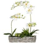 Orchideen-Arrangement 50 cm, weiß - 102200900000 - 1 - 140px