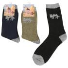 3er Pack Herren-Kamelhaar-Thermo-Socken multicolor   - 102779200000 - 1 - 140px