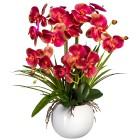 Orchidee pink, inkl. Keramiktopf, 58 cm - 102839100000 - 1 - 140px