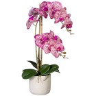 Orchidee im Keramiktopf, pink-creme, real-touch - 102870400000 - 1 - 140px