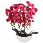 LED-Orchidee pink, im Keramiktopf - 103126600000 - 1 - 140px