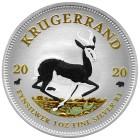 Bull & Bear Springbok 2020 - Diamondline - 103177500000 - 1 - 140px