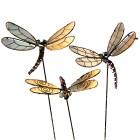 Gartenstecker-Set, 3-teilig Libellen