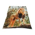 Sherpa-Decke Fotodruck - 63642400000 - 1 - 140px