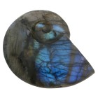 Ammonit Labradorit, bunt schimmernd - 68086500000 - 1 - 140px