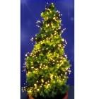 Cluster-Lichterkette 768 LEDs - 68246800000 - 1 - 140px