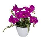 Orchideengesteck in der Keramikschale, pink, 45 cm - 68381900000 - 1 - 140px