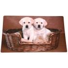 Fußmatte Hundewelpen, braun-beige, 74 x 44 cm - 68410200000 - 1 - 140px
