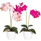 Orchideen, pink und rosé, 50 cm, 2er Set - 68420100000 - 1 - 140px
