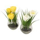 Tulpe im Glas, weiß & gelb, 2er Set