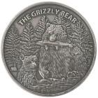 Silbermünze Grizzly Bär