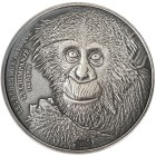Schimpanse Silbermünze