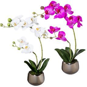 Orchideen 2er Set, weiß/fuchsia, mit Silbertopf