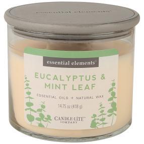 "Candle-Lite Duftkerze ""Eucalyptus & Mint"""