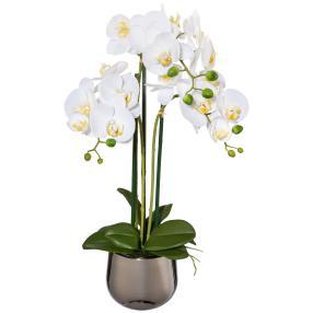 Orchidee im Silbertopf, ca. 60 cm