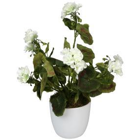 Geranienbusch weiß 40cm UV-beständig