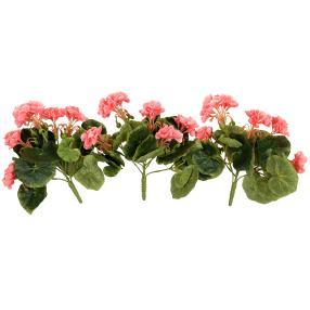 Mini-Geranie rosa 3er-Set UV-beständig