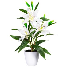 Lilie weiß, 60 cm, inkl. Melamintopf
