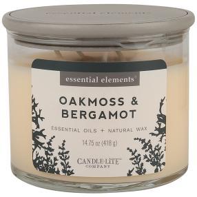Candle-Lite Duftkerze Oakmoss/Bergamot