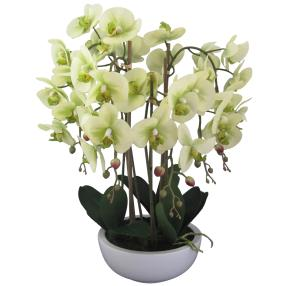 XL-Orchidee grün 66cm in Keramikschale