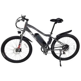 Elektro-Mountainbike
