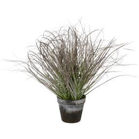 Grasbusch gefrostet 45 cm