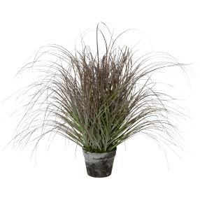 Grasbusch gefrostet 70 cm
