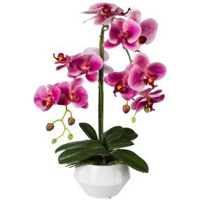 Orchidee pink, 52 cm, inkl. Keramikschale
