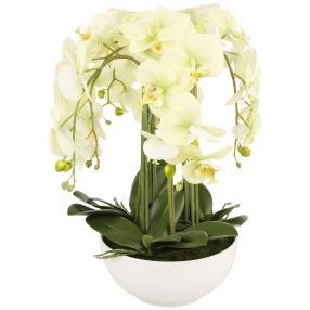 XL-Orchidee in Keramikschale, 54 cm